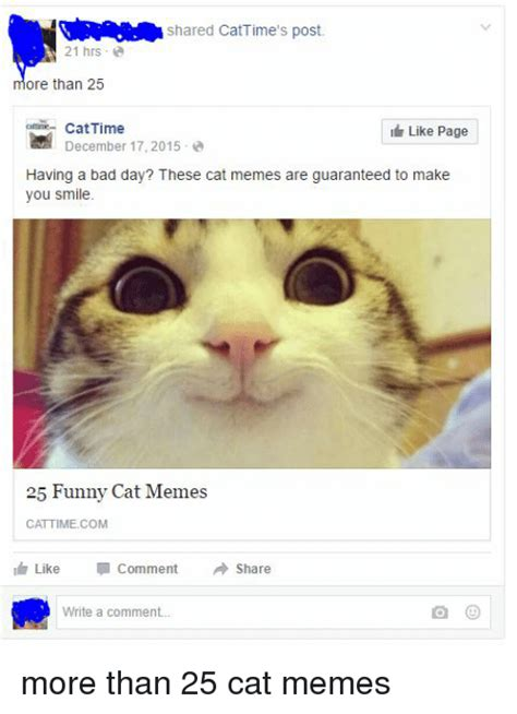 25+ Best Memes About Bad Day, Cats, Bad, and Meme | Bad ...