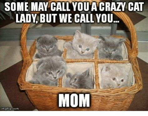 25+ Best Memes About Grumpy Cat and Moms | Grumpy Cat and ...