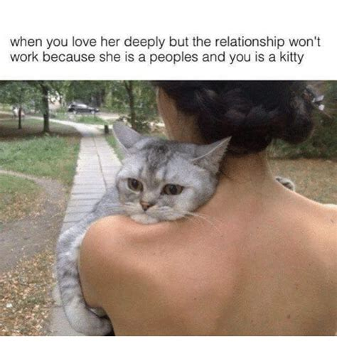 25+ Best Memes About Grumpy Cat and Work | Grumpy Cat and ...