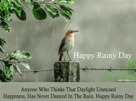 55+ Best Rainy Day Wish Pictures And Photos