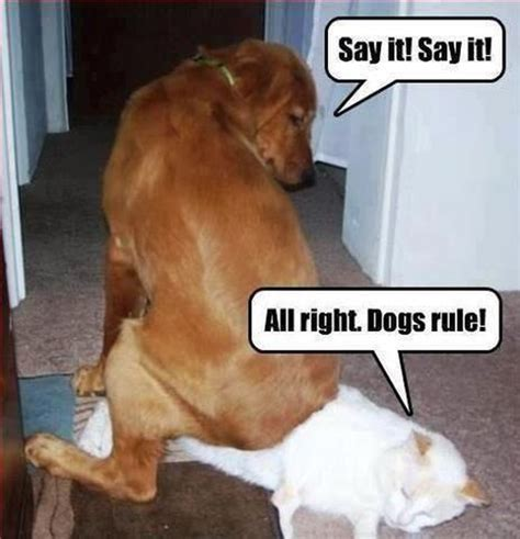 All right! I will say it! – Dog Humor