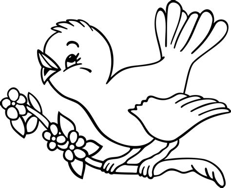 Bird Coloring Pages Clipart