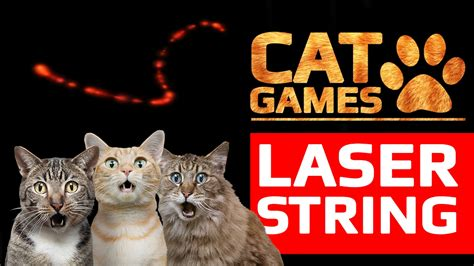CAT GAMES   AMAZING LASER STRING  VIDEOS FOR CATS TO WATCH ...