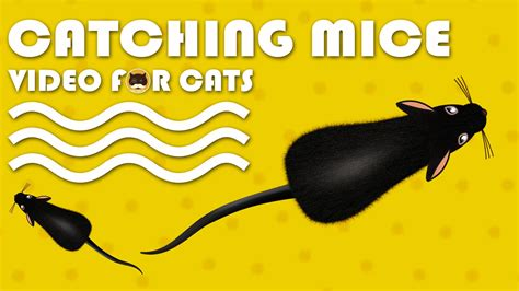 CAT GAMES – Catching Mice! Entertainment Video for Cats to ...