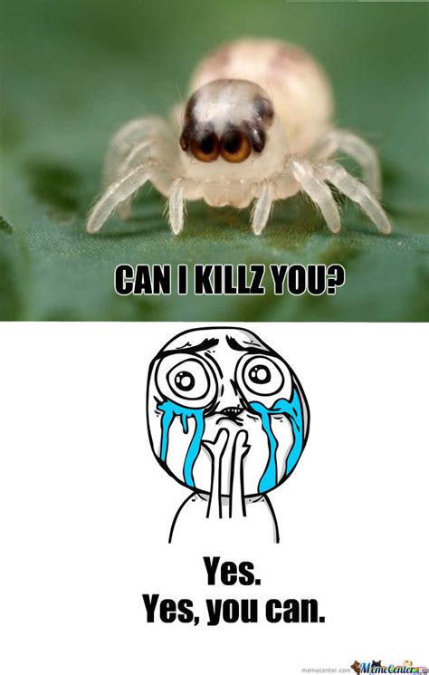 Cute Spider by recyclebin   Meme Center