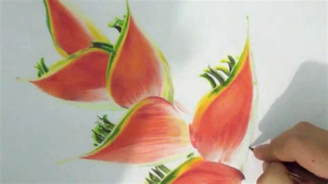 dibujo flores a color   flowers color drawing   色鉛筆で描いた花 ...