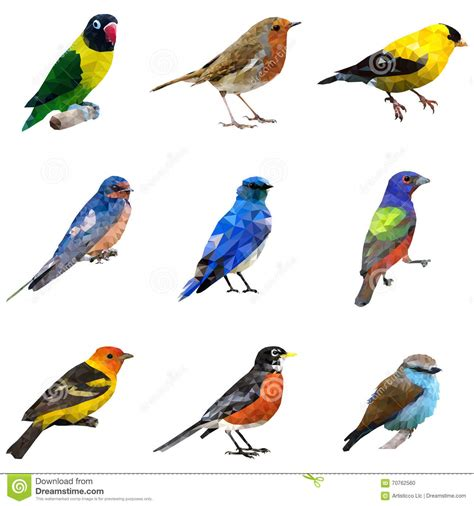 Different Type of Birds stock vector. Image of icons ...
