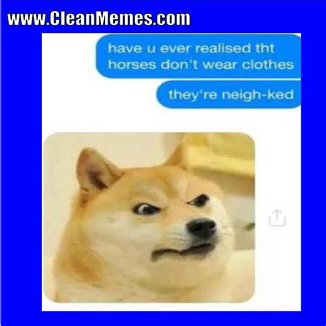 Dog Memes | Clean Memes – The Best The Most Online | Page 14