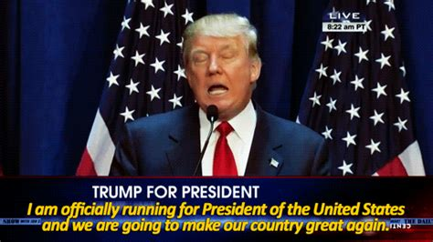 Donald Trump President GIF   Find & Share on GIPHY