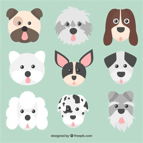 Faces collection dogs of different races Vector | Free ...