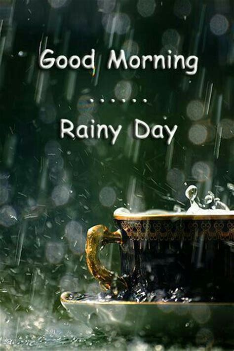 Good Morning & Happy Friday! Another rainy day here in # ...