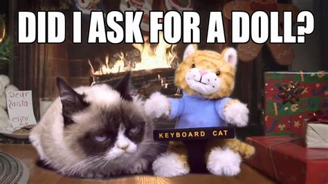 Grumpy Cat Gets The Keyboard Cat Toy For Christmas!   YouTube