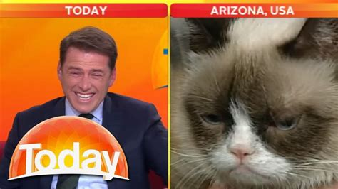 Grumpy Cat VS Karl Stefanovic   YouTube