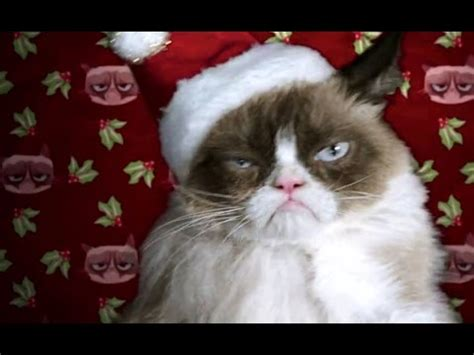 Grumpy Cat's Worst Christmas Ever Official TRAILER  2014 ...