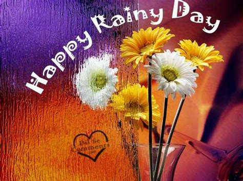 Happy Rainy Day Flowers For You Picture