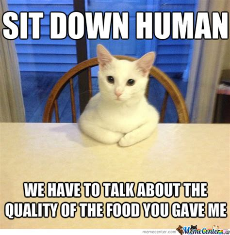 HUNGRY CAT MEMES image memes at relatably.com