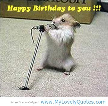 Image   Funny happy birthday quotes 1 1 .jpg   Whatever ...