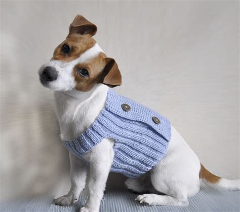 Knitted Sweaters For Small Dogs Free Patterns