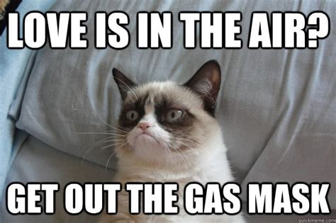 Love is in the air? Get out the gas mask   Misc   quickmeme
