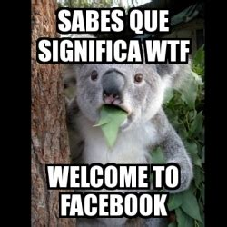 Meme Koala   sabes que significa wtf welcome to facebook ...