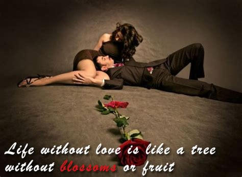 Miracle Of Love: Romantic Love