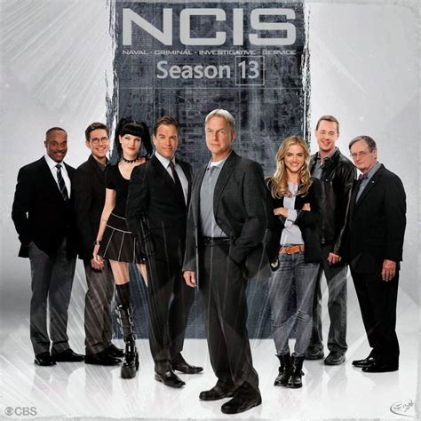 NCIS Season 13 Finale Spoilers: Ziva David Actress Cote De ...