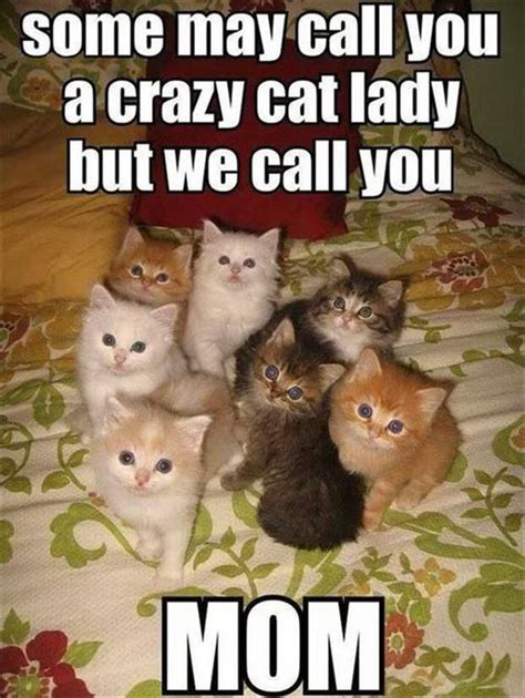 Some may call you a crazy cat lady but we call you Mom ...