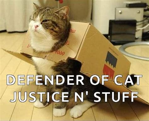 Super Silly Cats | Funny Cats   image #2806907 by Yanito ...