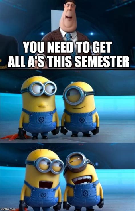 The Best Minion Memes Ever