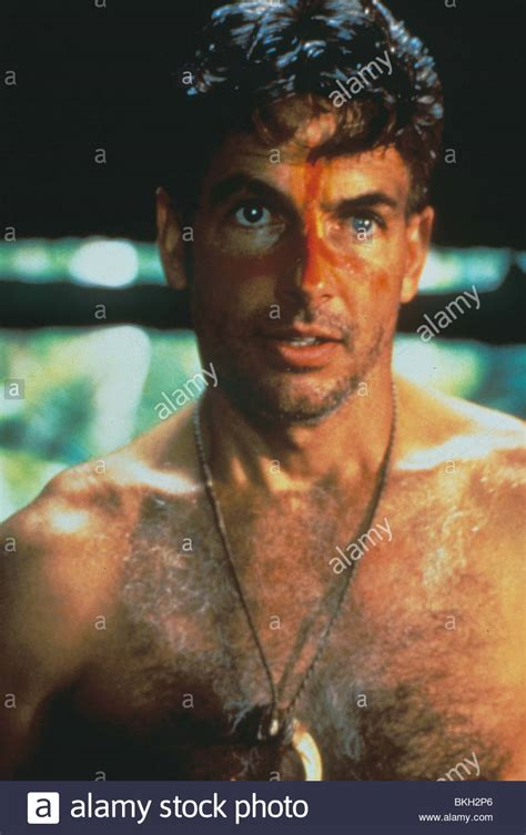 TILL THERE WAS YOU  1990  MARK HARMON TTWY 002 Stock Photo ...