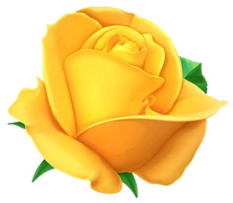 Transparent Yellow Rose Png Picture Free Download | Free ...