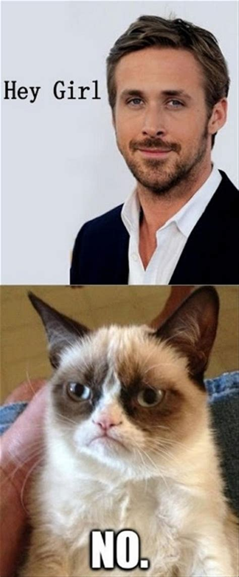 Ultimate Grumpy Cat Compilation  17 Pics