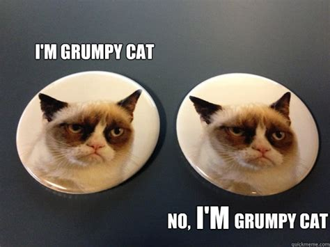 Who IS the real Grumpy Cat? | Tard The Grumpy Cat | Pinterest