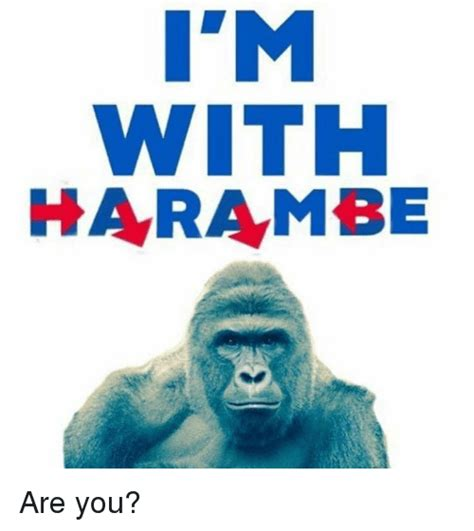 WITH HARAMBE Are You?   Dank Meme on SIZZLE